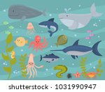 sea animals vector creatures... | Shutterstock .eps vector #1031990947