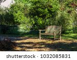 natural park with path way ... | Shutterstock . vector #1032085831