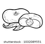 coloring book for children ... | Shutterstock .eps vector #1032089551