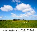 nice view of great ocean road ... | Shutterstock . vector #1032152761