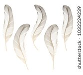 bird's feathers set. soft... | Shutterstock .eps vector #1032224239