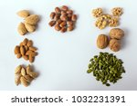 different types of nuts and... | Shutterstock . vector #1032231391