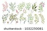 watercolor illustration. ... | Shutterstock . vector #1032250081