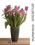 Small photo of Bouquet of overblown pink and red tulips (Tulipa Pretty Woman and Pretty Love) on a wooden table.