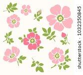 vector set of pink flowers....   Shutterstock .eps vector #1032350845