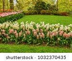 saxony  germany. elba river ... | Shutterstock . vector #1032370435