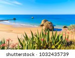green agave plants on cliff and ...   Shutterstock . vector #1032435739