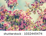 spring tree branch with small... | Shutterstock . vector #1032445474