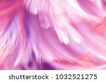 bird and chickens feather... | Shutterstock . vector #1032521275