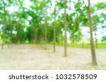 abstract blur walkway with tree ... | Shutterstock . vector #1032578509