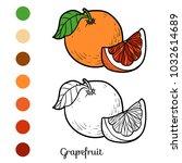 coloring book for children ...   Shutterstock .eps vector #1032614689