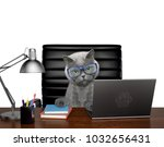 Stock photo cat in glasses manager is doing some work on the computer isolated on white background 1032656431