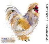 silkie rooster. poultry farming.... | Shutterstock . vector #1032666391