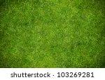 Green grass natural background. ...