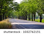 Small photo of Streets shaded by trees There are warning signs to be careful ahead of the curve.