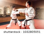 martial arts masters  self... | Shutterstock . vector #1032805051
