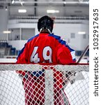 Small photo of Hockey goalie in the world