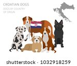 dogs by country of origin.... | Shutterstock .eps vector #1032918259