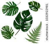 green leaves vector  | Shutterstock .eps vector #1032922981