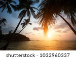 palm trees on a tropical sea... | Shutterstock . vector #1032960337