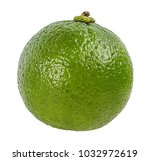 lime isolated on white... | Shutterstock . vector #1032972619