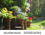 many flower pots as a... | Shutterstock . vector #1033016341