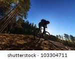 biker riding a mountain bike in ... | Shutterstock . vector #103304711