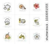 vector set design colorful... | Shutterstock .eps vector #1033051555