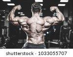 handsome brutal caucasian... | Shutterstock . vector #1033055707