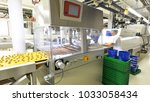 production of pralines in a... | Shutterstock . vector #1033058434