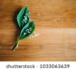 the lily of the valley on the... | Shutterstock . vector #1033063639