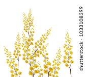 flowers of mimosa. vector | Shutterstock .eps vector #1033108399