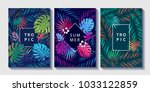 tropical and jungle plants and... | Shutterstock .eps vector #1033122859