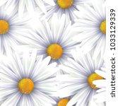 chamomile flowers background ... | Shutterstock .eps vector #1033129339