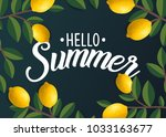 hello summer with leaf and... | Shutterstock .eps vector #1033163677