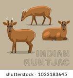deer indian muntjac cartoon...   Shutterstock .eps vector #1033183645
