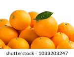 many freshly picked orange... | Shutterstock . vector #1033203247