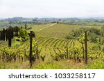 tuscan vineyard farm with... | Shutterstock . vector #1033258117