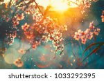 spring blossom background.... | Shutterstock . vector #1033292395