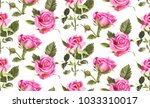 seamless pattern with... | Shutterstock . vector #1033310017