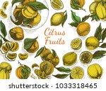 vector sketch background fruit. ... | Shutterstock .eps vector #1033318465