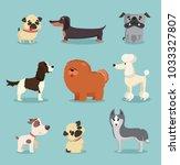 vector illustration set of cute ... | Shutterstock .eps vector #1033327807