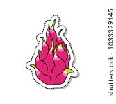 pitahaya  dragon fruit  doodle... | Shutterstock .eps vector #1033329145