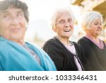 group of senior women together... | Shutterstock . vector #1033346431