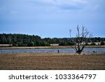 landscape of wolin island ... | Shutterstock . vector #1033364797