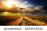 road in field with ripe yellow... | Shutterstock . vector #1033414231