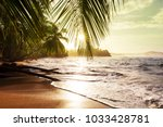 beautiful tropical pacific... | Shutterstock . vector #1033428781