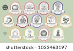 berry and fruit labels set.... | Shutterstock .eps vector #1033463197