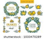 vector set with oranges. round... | Shutterstock .eps vector #1033470289