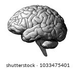 monochrome engraving brain... | Shutterstock .eps vector #1033475401